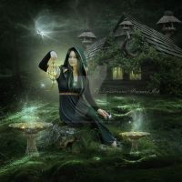 Forest Fairy by ThelemaDreamsArt