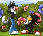 Sonic - Shadow X Claire - The Proposal by thatonesmurfX103-9