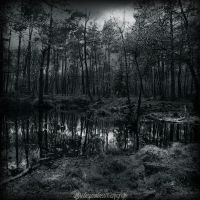 La mare aux fees III by CountessBloody