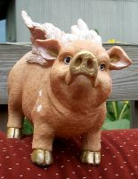 Flying Pig 1 by Penny-Stock