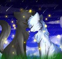 Warriors cat - Crowfeather x Feathertail by Tiffy-OoO