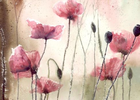 Poppys and light by nibybiel