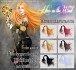 Hair In The Wind by Trisste-stocks