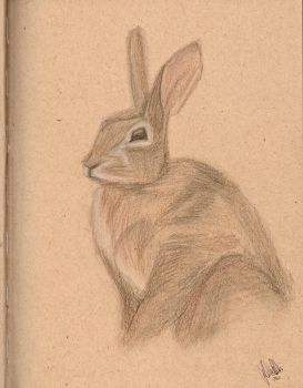 Rabbit on Recycled Paper by shadowlotr