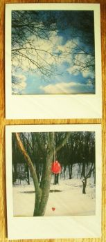 POLAROID: above and below. by DntFearThReapr