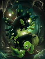 Life of Zygarde by TrachaaArMy