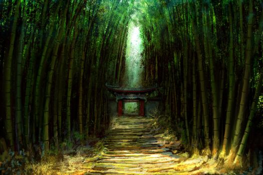 Bamboo path by fxEVo