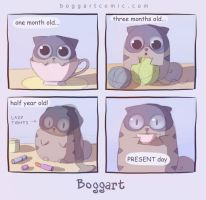 boggart - 30 by Apofiss