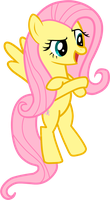 Assertive Fluttershy by CawinEMD