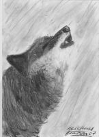 wolf howl by CarMadMike